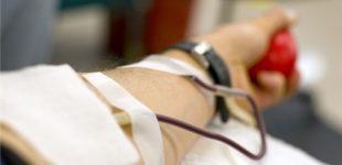 Ladispoli, domenica 23 ottobre l'Avis organizza la donazione del sangue