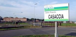 Venerdì 30 Gennaio alle 10.30 una manifestazione organizzata dagli Animalisti Italiani davanti al Centro di Sperimentazione ENEA di Casaccia