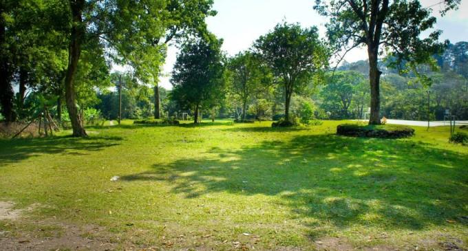 Ronciglione adotta un area verde affidate ai cittadini for Progettare spazi verdi