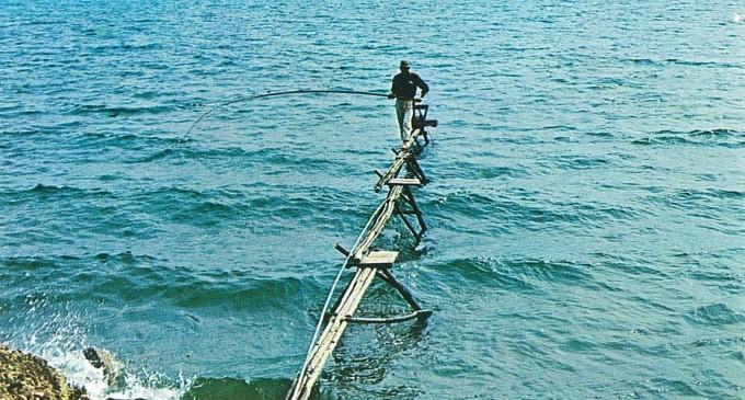 Comune di Anguillara: novità per la pesca alla Tirlindana