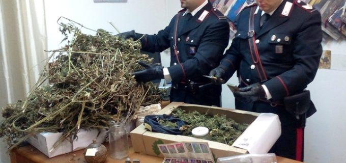 All'alba 3 arresti a Trevignano Romano e oltre 5 kg di marijuana e hashish sequestrati