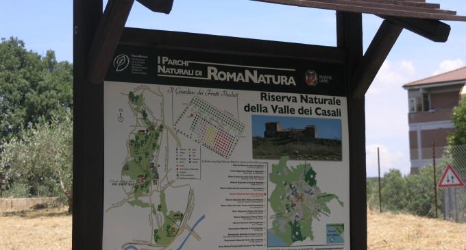 """Regione Lazio, Avenali: """"finalmente il Piano d'Assetto della Valle dei Casali"""""""