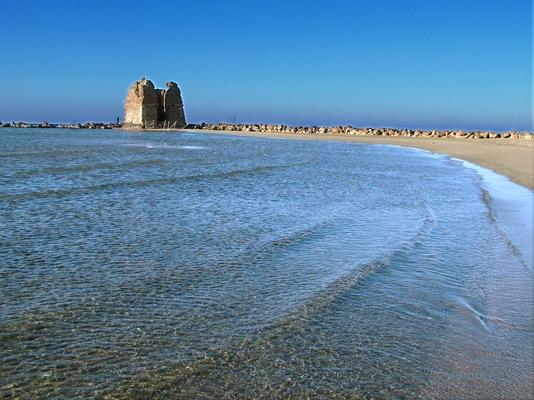 Matrimonio Spiaggia Ladispoli : Ladispoli il aprile solidarietà ambientale sull