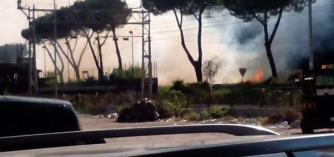"""Torquati (XV): """"Ancora incendi su Via Flaminia, Municipio provveda a manutenzione, come fatto lo scorso anno"""""""