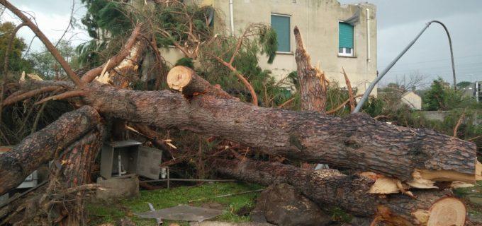 """Tromba d'aria, Gruppo PD XV: """"Bene richiesta calamità naturale del Municipio, ora lo faccia anche il Comune"""""""