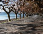 Crisi livelli del lago, Vice Sindaco Trevignano Galloni: bene disponibilità Zingaretti, lunedì andremo in Regione