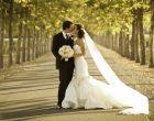 Galloni: sposarsi in luoghi privati suggestivi, anche a Trevignano sarà possibile