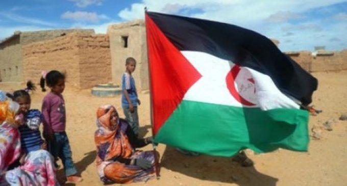 Solidarità e Volontariato: Anguillara e Saharawi