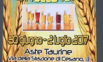 A Osteria Nuova 1^ edizione Festa della birra