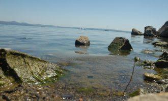 La crisi del lago: responsabilità e possibilità di una soluzione