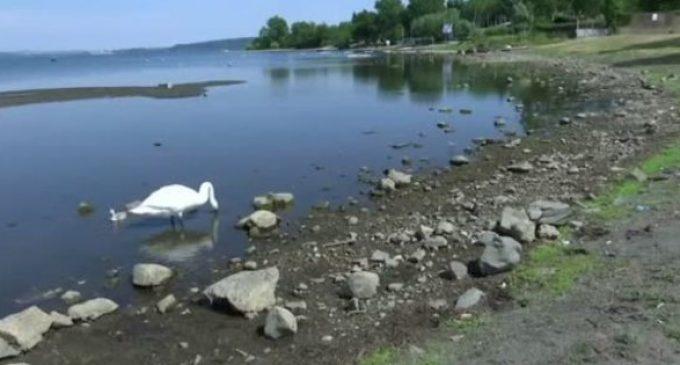 Crisi Lago di Bracciano. Da lunedì parte la rimozione delle alghe e la nuova diffida a installare saracinesca su condotte Acea.