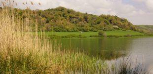 """Parco Bracciano-Martignano: pubblicato l'avviso per la presentazione di proposte per il programma """"Tesori Naturali 2018"""""""