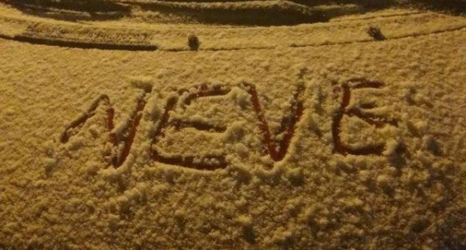 Ladispoli, inviate in Regione le richieste di risarcimento per gli agricoltori danneggiati dalla neve