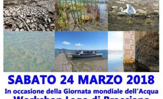 Giornata mondiale dell'acqua. Il lago di Bracciano: un ecosistema da conservare