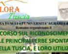 Università Agraria di Oriolo: primo corso sul riconoscimento delle erbe