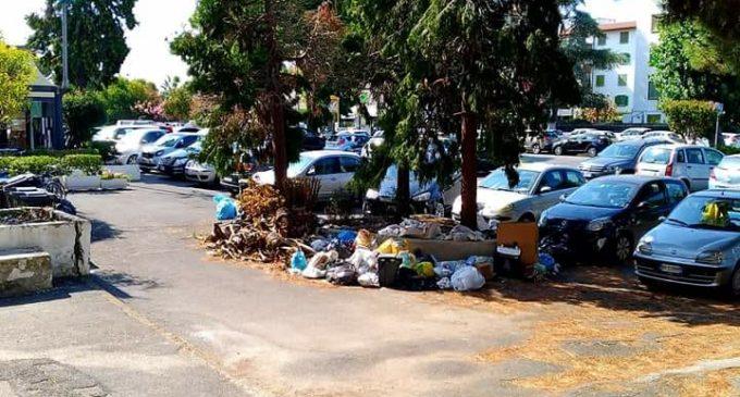 Cerenova, discarica abusiva vicino Via Sergio Angelucci: individuati e multati 4 responsabili