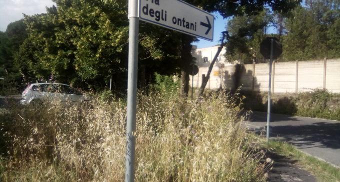 Lavori di manutenzione sulla via Braccianese