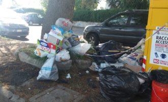 Discarica abusiva in Via Marcina a Cerenova. La Delegata Dell'Olio: 'non scambiate i raccoglitori di abiti usati per una pattumiera!'
