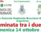 """""""Giornata Nazionale del Camminare"""" Federtrek in collaborazione con il Comune di Anguillara, l'Associazione Terre Comuni ed il CAI organizzano un' escursione guidata a piedi"""
