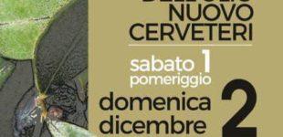 Cerveteri, domani al via la decima edizione della Festa dell'Olio Nuovo: un week end tra degustazioni, convegni e musica
