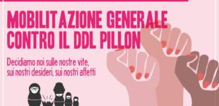 NON UNA DI MENO: COMUNICATO STAMPA MOBILITAZIONE GENERALE CONTRO IL DDL PILLON
