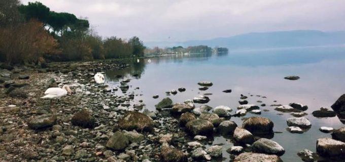 """Comitato Difesa Lago di Bracciano: """"Sentenza pone fine ad arroganza Acea"""""""