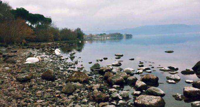 Il Comitato Difesa Lago di Bracciano chiede rigetto ricorso Acea Ato 2: domani udienza al Tribunale Superiore Acque Pubbliche
