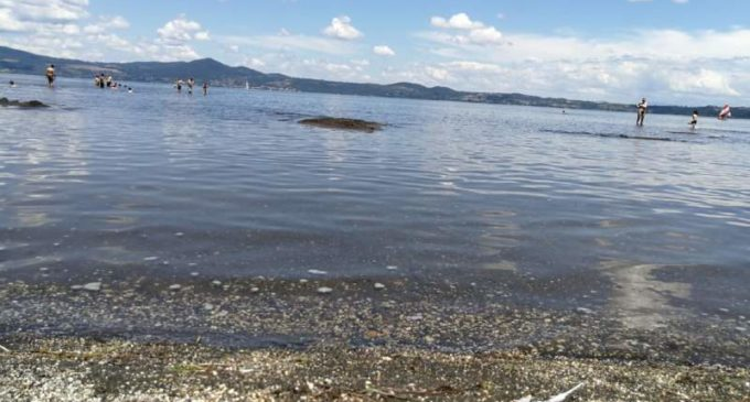 Comitato Acqua Pubblica Lago di Bracciano: L'ACQUA PUBBLICA E' ANCORA NELLE INTENZIONI DEL PD DI ZINGARETTI ?
