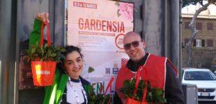 Cerveteri, Bentornata Gardensia è un successo! Raccolti più di 1000 euro per la Ricerca Scientifica sulla Sclerosi Multipla