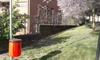 Manziana: installati cestini per deiezioni canine