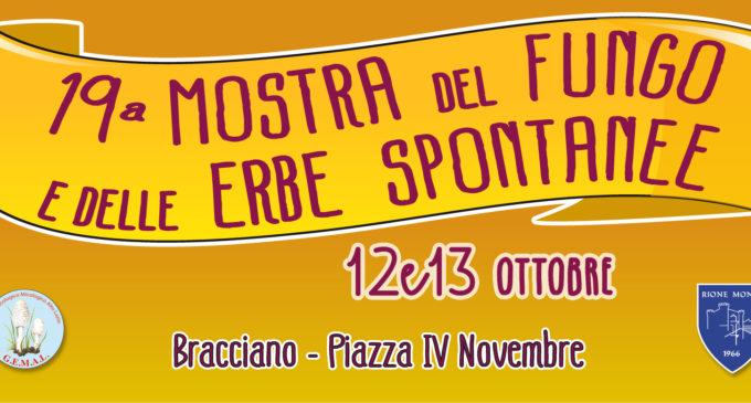 """Bracciano: la """"19° mostra del Fungo e elle Erbe spontanee""""- 12, 13 Ottobre 2019"""