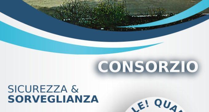 """Marina di Cerveteri: """"Progetto Consorzio"""", 18 agosto 2019 – Centro polivalente"""