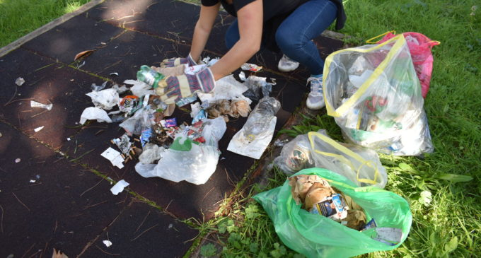 Bracciano, Rete degli Studenti Medi al primo ciclo di pulizia in collaborazione con il WWF