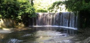 Eventi e programmi per il fine settimana – Parco di Veio