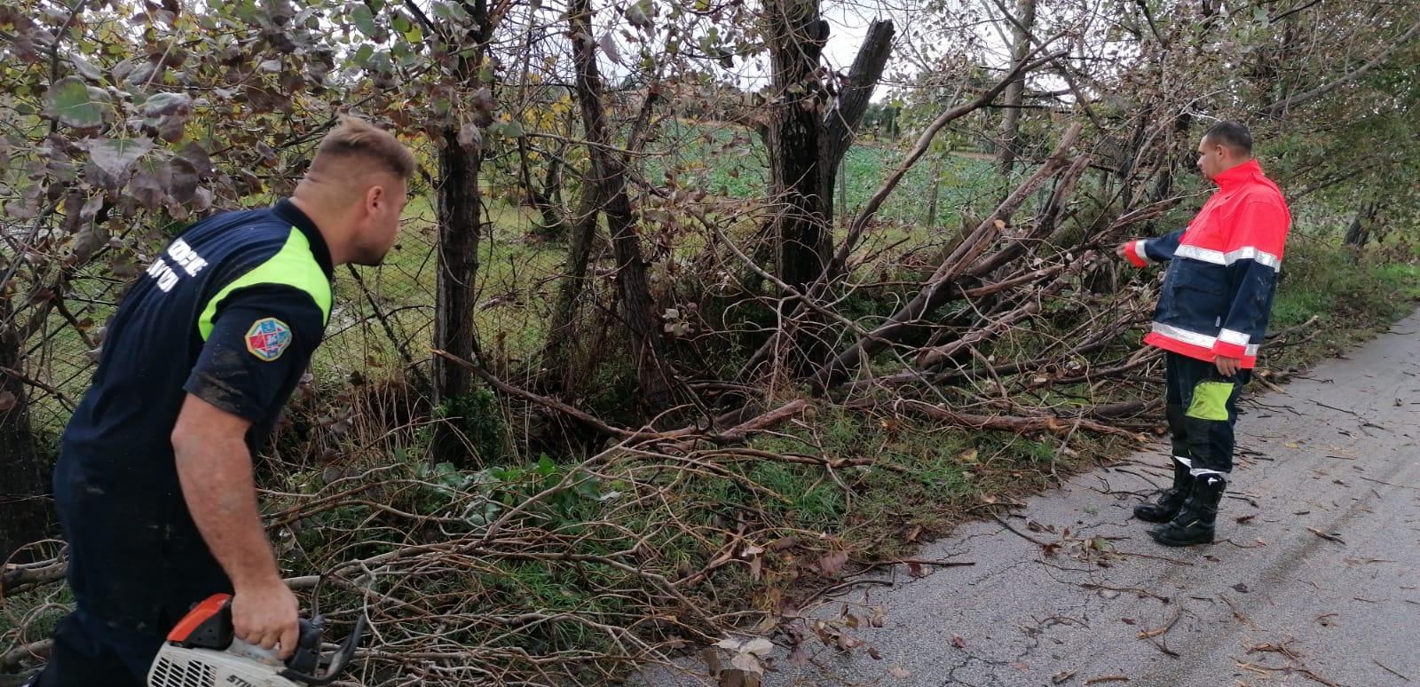 Cerveteri, Maltempo: il Sindaco Pascucci ringrazia ProCiv, Polizia Locale e Dirigenti - L'agone