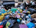 """Rifiuti a Roma, WWF: """"Raggiro ai danni dei cittadini"""""""