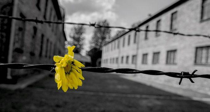 """Giornata della Memoria """"Quelli che non ricordano il passato sono condannati a ripeterlo"""""""