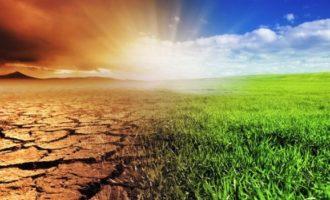"""L'allarme sul clima: """"Il 2020 l'anno più caldo di sempre, sarà un'estate torrida"""""""