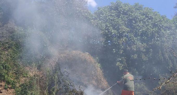 Cerveteri, incendi: doppio intervento della Protezione Civile Comunale