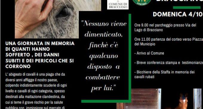 Marcia su Bracciano in Memoria dei cavalli rubati. Domenica 4 ottobre