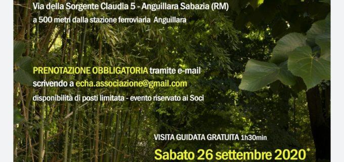 VISITA ALLA DOMUS ROMANA DELL'ACQUA CLAUDIA, SABATO 26 SETTEMBRE