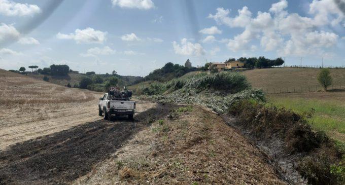 Cerveteri, incendio in Via Carmignano: sul posto ProCiv e Vigili del Fuoco