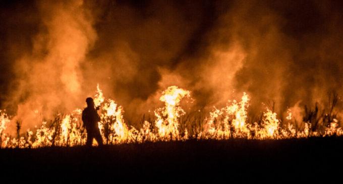 Incendi, speculazioni e crisi climatica: cronache dall'Argentina che brucia